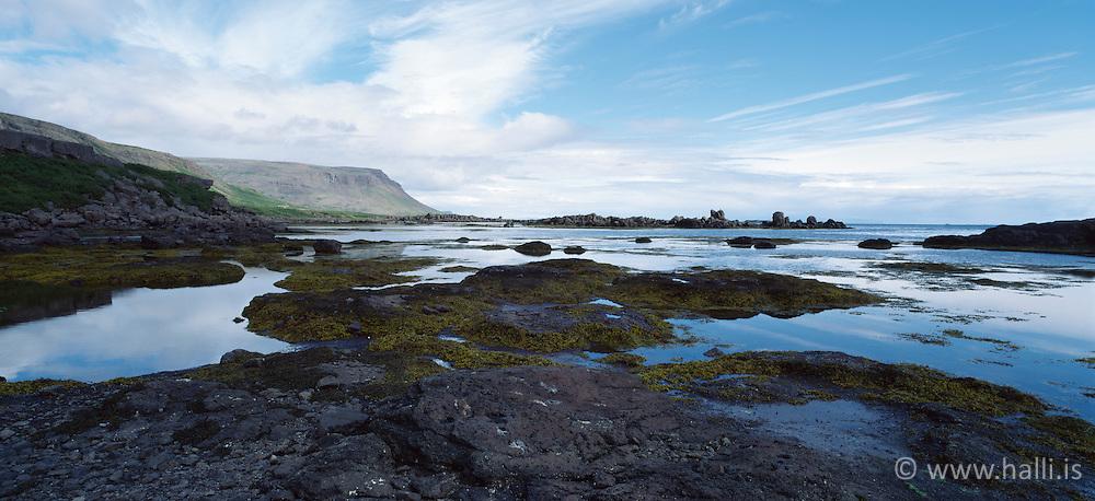 Vatnsfjörður, selir í fjarska - Seals in Vatnsfjordur at Bardastrond