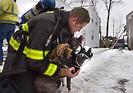 Steven Sicker, a firefighter with the Utica Fire Department attempts to give oxygen to a dog that was rescued during a structure fire at 2635 Edgewood Road Jan. 15, 2016 in Utica, N.Y.
