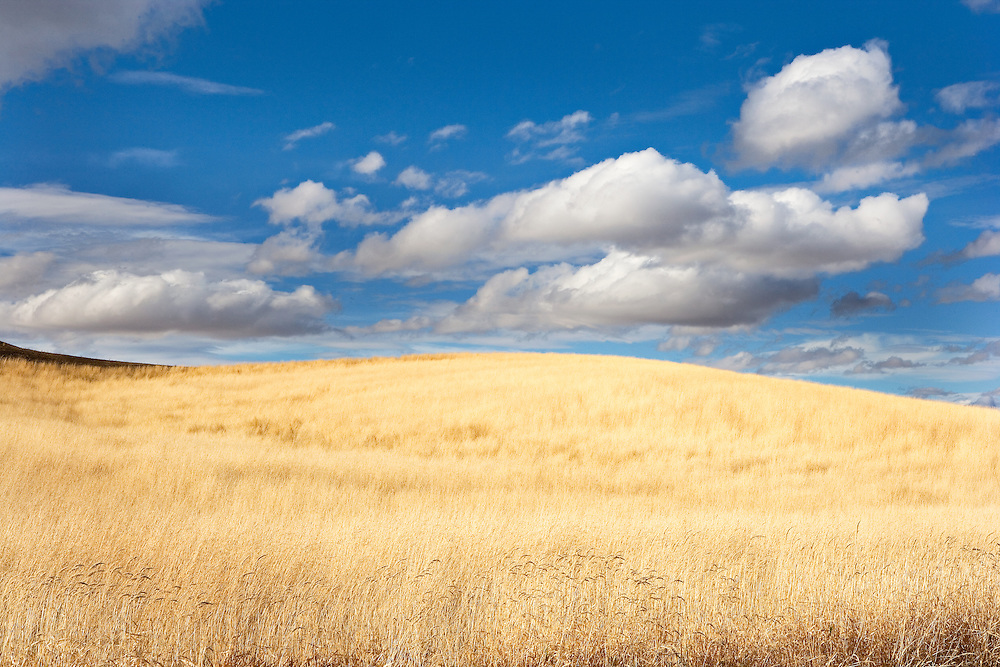 clouds over prarie grass in the Palouse hills of Eastern Washington USA