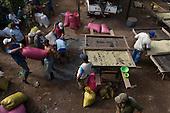 Nicaragua: APAC Fairtrade Coffee