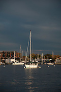 Moored sailboats in ominous light