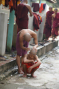 Myanmar, Amarapura, Mahagandayon Monastery, Burmese monks shaves the head of a colleague