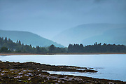 Conifers and mountains across a loch - misty landscape scene in Scotland