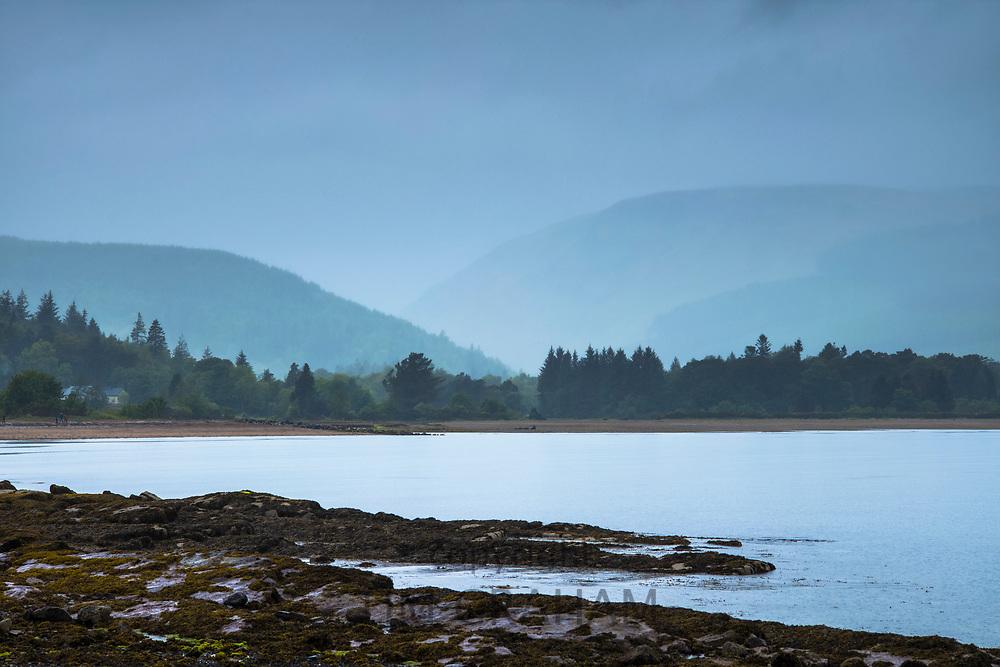 Conifers and mountains across a loch - misty landscape scene in Scotland