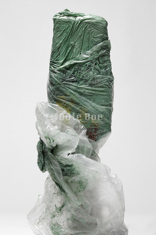 paintbrush with paint covered with a plastic bag to preserve the brush