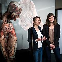 Brussels, Belgium - 20 April 2016<br /> Musée de la Médecine.<br /> Photo: Ezequiel Scagnetti