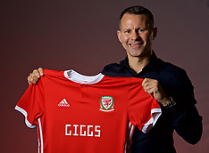 180115 Wales appoint new manager