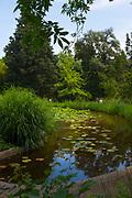 Pond in the Jardin des plantes de Montpellier - Botanic Gardens, Montpellier, France