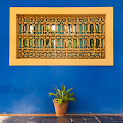 Colorful wall at Majorelle Garden in Marrakech, Morocco