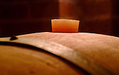 WINE In Vino Veritas