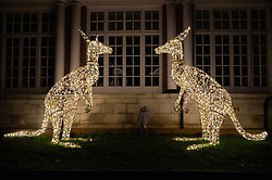 November 22, 2018 - London, London, UK - London, UK. Two year old Lily Tang views a pair of kangaroo shaped lights showing as part of the new ZSL London Zoo Christmas light trail, experiencing the landmark London location in a different light. (Credit Image: © Ray Tang/London News Pictures via ZUMA Wire)