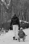 Berlin, GERMANY, General Views, GVs. Berlin Spandau,  Child being pulled on a sledge. Monday - 12/01/2009 {Mandatory Credit/Peter Spurrier] Street Photos