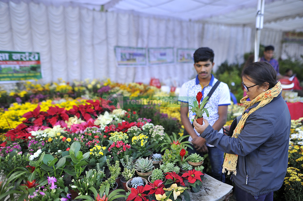 November 1, 2018 - Kathmandu, NP, Nepal - Nepalese people buying different varieties of flower showcased during floral expo in Jawalakhel, Lalitpur, Nepal on Thursday, November 01, 2018. (Credit Image: © Narayan Maharjan/NurPhoto via ZUMA Press)
