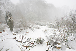 Snow falling at Glebe Cottage. Overhead view of the garden
