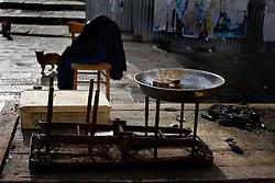 Taranto mercato del pesce, fine della giornata, banco con resti di pesce e cozze e gatti che sopraggiungono leccandosi i baffi.