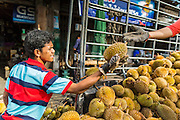 09 JULY 2013 - PATTANI, PATTANI, THAILAND: Durians are unloaded from a pickup truck in the market in Pattani.  Pattani, along with Narathiwat and Yala, are the only three Muslim majority provinces in Thailand.     PHOTO BY JACK KURTZ