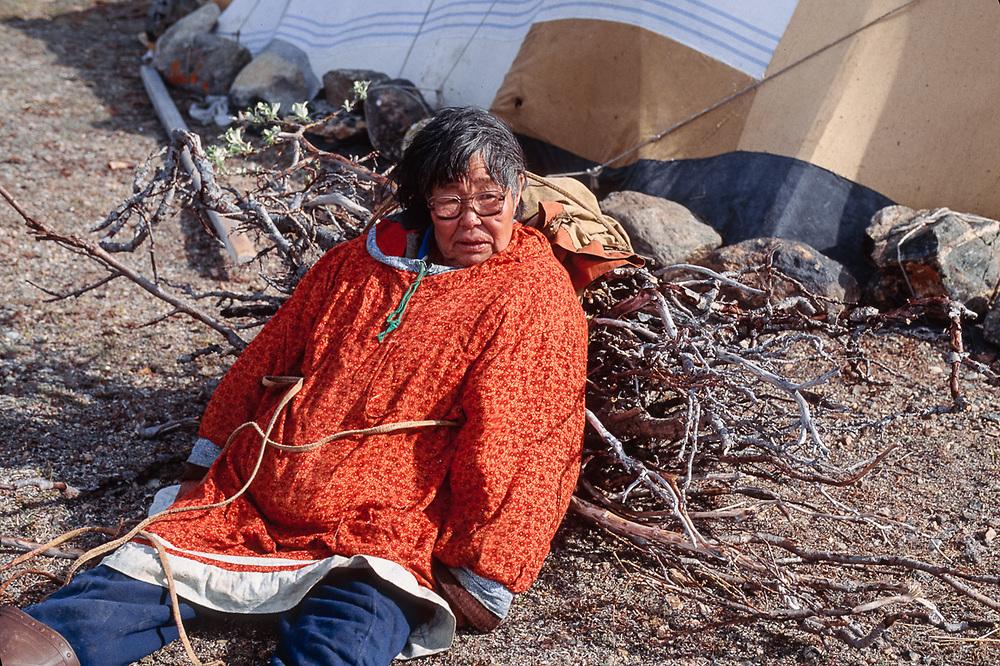 Chukchi woman carries willow firewood, Chukchi reindeer camp, Val 'karvaam Valley Chukotsk Peninsula, Northeast  Russia