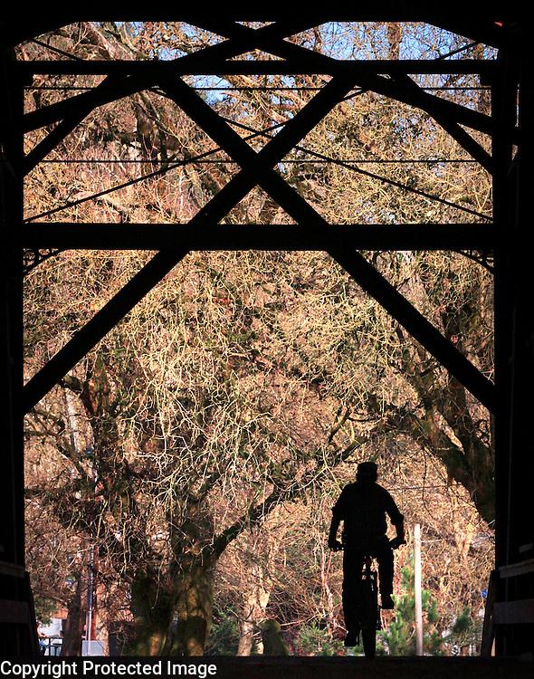 A bicyclist pedals through the Felton Covered Bridge in Felton, California.<br /> Photo by Shmuel Thaler <br /> shmuel_thaler@yahoo.com www.shmuelthaler.com
