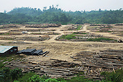 Logging roads and camps. This was originally unspoilt primary rainforest. Baram, Sarawak, Malaysia 2015<br /> <br /> These regions were were part of the world's oldest rainforest, which dates back 160 million years. The indigenous native communities' survival depends on sustainable development of primary rainforest, a biodiversity resource, with countless insects, an array of birds and endangered species, which support one of the most diverse tropical ecosystems in the world. <br /> <br /> Borneo native peoples and their rainforest habitat revisited two decades later: 1989/1991 and 2012/2014/2015. <br /> <br /> Sarawak's primary rainforests have been systematically logged over decades, threatening the sustainable lifestyle of its indigenous peoples who relied on nomadic hunter-gathering and rotational slash & burn cultivation of small areas of forest to survive. Now only a few areas of pristine rainforest remain; for the Dayaks and Penan this spells disaster, a rapidly disappearing way of life, forced re-settlement, many becoming wage-slaves. Large and medium size tree trunks have been sawn down and dragged out by bulldozers, leaving destruction in their midst, and for the most part a primary rainforest ecosystem beyond repair. Nowadays palm oil plantations and hydro-electric dam projects cover hundreds of thousands of hectares of what was the world's oldest rainforest ecosystem which had some of the highest rates of flora and fauna endemism, species found there and nowhere else on Earth, and this deforestation has done irreparable ecological damage to that region