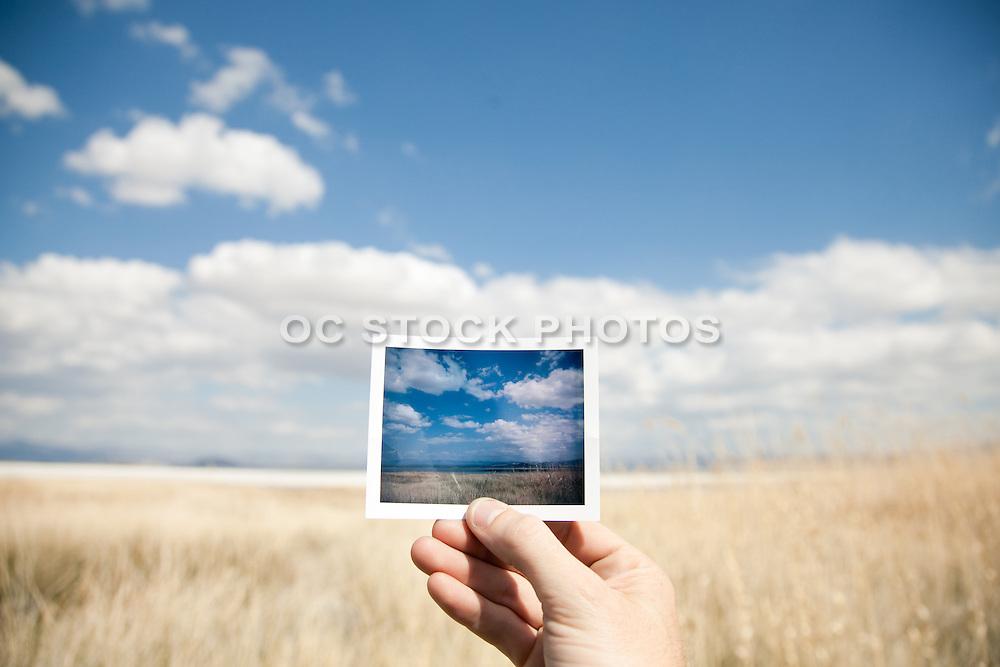 A Dried Grass Field