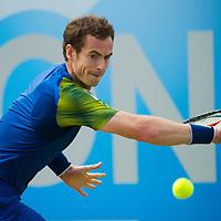 AEGON Tennis Championship 2013