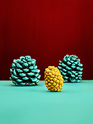 colored pine cones against a colored background
