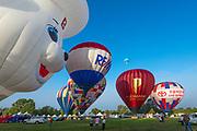 Temecula Balloon & Wine Festival