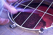 merlot Pumping over, spraying the must on the skins and pips cap chateau la dauphine fronsac bordeaux france