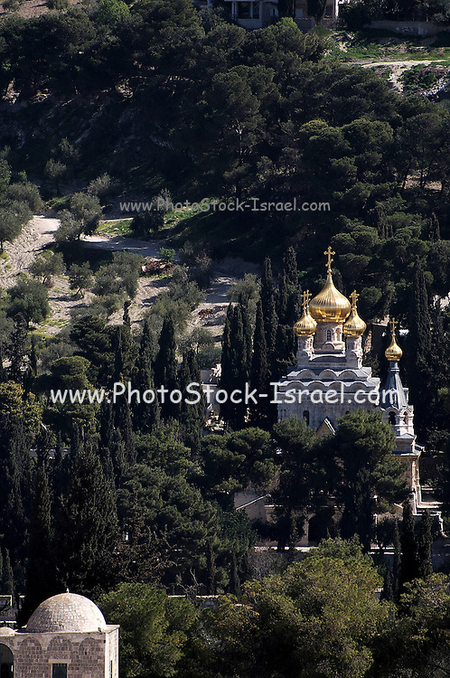 Israel, Jerusalem, Old City. The Russian Orthodox Church of Saint Mary Magdalene and Mount of Olives