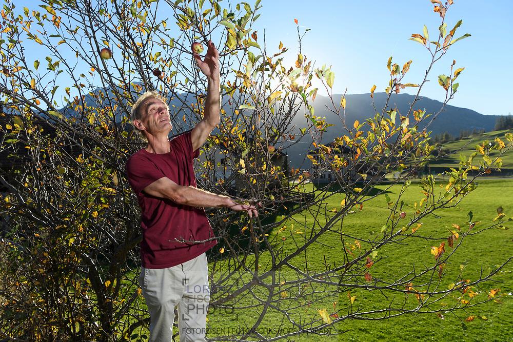 The fruit farmer Thomas Egli and apples, Parc Ela, Grisons, Switzerland