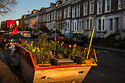 Skip full of plants and garden herbs planted for the duration of the Coronavirus lockdown on 26th March 2020 in Camden, London, United Kingdom.