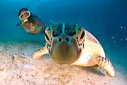 Philippines Diving & Travel