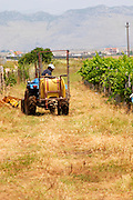 Vineyard tractor. Ranxe mountains in the background. Kantina Miqesia or Medaur winery, Koplik. Albania, Balkan, Europe.