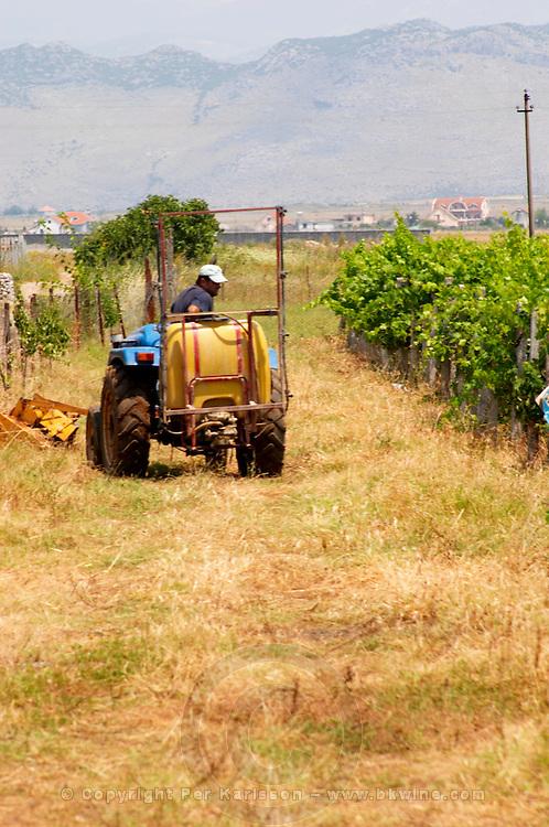 Vineyard tractor. Ranxe mountains in the background. Kantina Miqesia or Medaur winery, Koplik. Albania, Balkan, Europe.