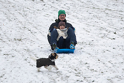© Licensed to London News Pictures. 08/02/2021. London, UK. Members of the public sled in a snowy Greenwich park in South East London. Snow is expected for large parts of the UK and a yellow weather warning is in place in parts of England as Storm Darcy hits the UK. Photo credit: George Cracknell Wright/LNP