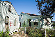 20 SEPTEMBER 2006 - NEW ORLEANS, LOUISIANA: Abandoned homes on Tennessee St. in the Lower 9th Ward of New Orleans, LA. The neighborhood was abandoned after flooding from nearby canals after Hurricane Katrina inundated this part of the city.  Photo by Jack Kurtz / ZUMA Press