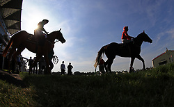 Horses go to post before the Windsor Castle Stakes during day one of Royal Ascot at Ascot Racecourse.