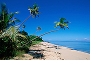 Plantation Island Resort, Malololailai, Mamanuca Group, Fiji,<br />