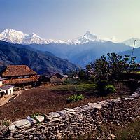 Annapurna massif from Dhampus village, Himalaya, Nepal