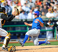 Reed Johnson scores for the Cubs.