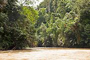 Temburong river in Ulu Temburong National Park, Brunei