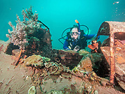 """Plane wreck of the Mitsubishi A6M """"Zero"""", a long-range carrier-based fighter aircraft in PNG."""
