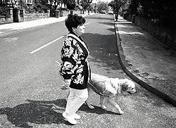 Guide dog for the blind training, Nottingham UK 1993
