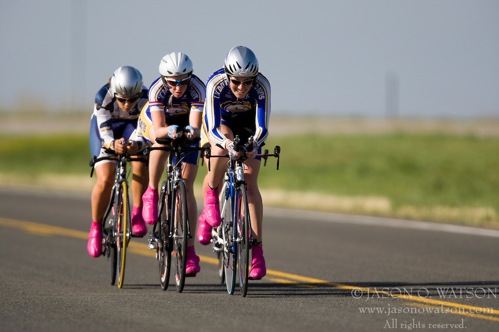 The University of California - Davis team of Amanda Seigle, Amy Chandos, Amy Encalada, and Marisa McAdler competes in the women's division 1 race.  The 2008 USA Cycling Collegiate National Championships Team Time Trial event was held near Wellington, CO on May 9, 2008.  Teams of 3 or 4 riders raced over a 20km out and back course that ran along a service road to Interstate 25.