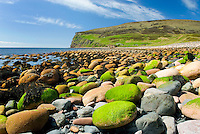 Giant rounded cobblestones lining the beach at Rackwick Isle of Hoy, Orkney Islands Scotland
