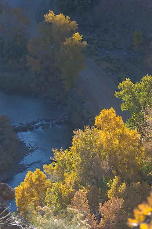 Colorado, Denver, Littleton, Metro, Waterton Canyon, hike, trail, outside, nature, park, river, adventure, South Platte, River