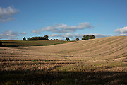 Agricultural landscape of harvested elds in Shrawley, United Kingdom.