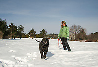 """""""Blueberry"""" and Barbara Lukacsy enjoying a walk together at Ahern State Park on Saturday morning.  (Karen Bobotas/for the Laconia Daily Sun)"""