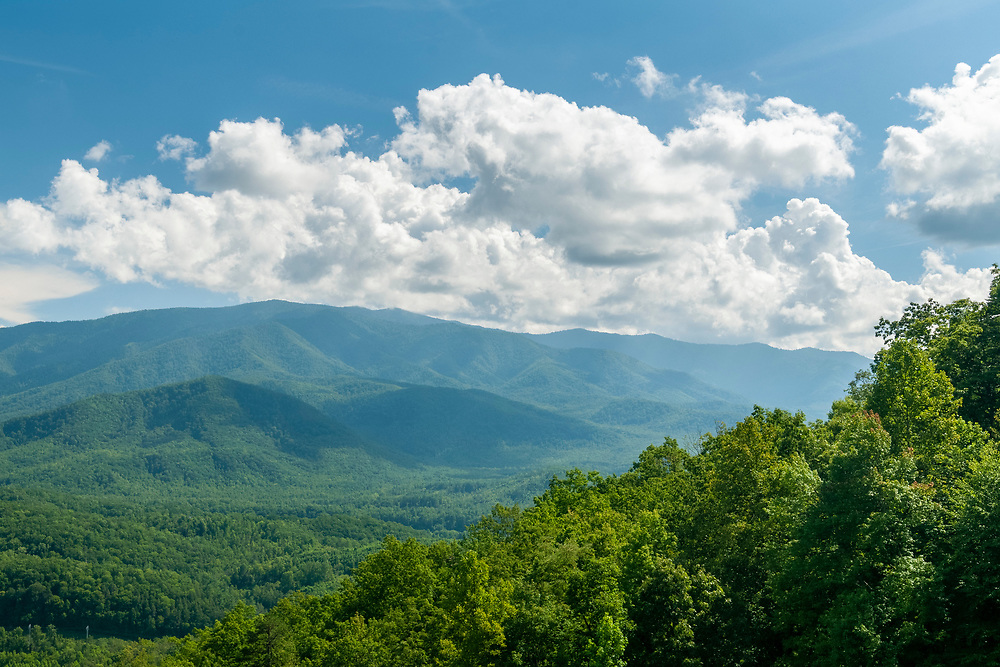 View of Inadu Knob (tallest peak) from the Mount Cammerer Overlook on the Foothills Parkway in Great Smoky Mountains National Park in Cosby, Tennessee on Tuesday, August 11, 2020. Copyright 2020 Jason Barnette