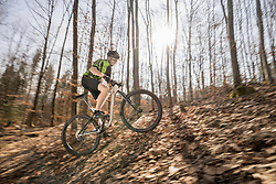 Mountain biker riding uphill on forest track